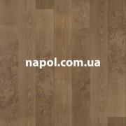 Линолеум Glamour Amazon 3238
