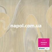 линолеум Premium Aston 2