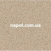 Линолеум Vector Gard 9301
